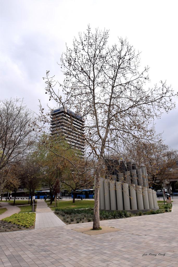 City park by kork