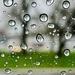 Water - Rain Drops