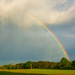 Spring rainbow...
