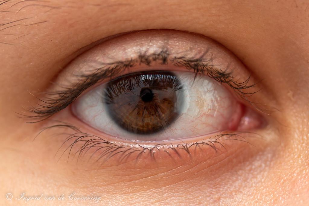 An open eye!  by ingrid01