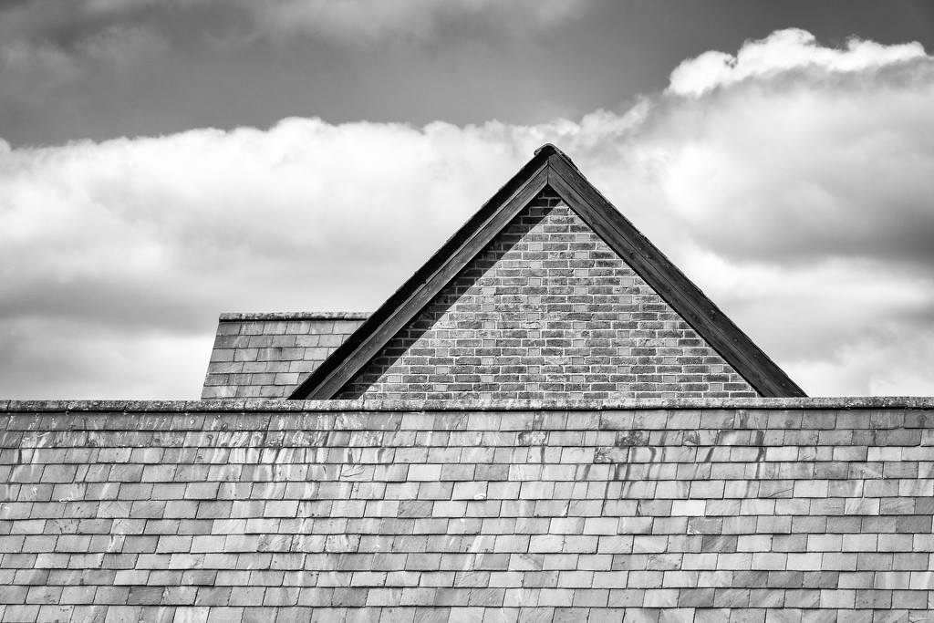Roof Lines by humphreyhippo