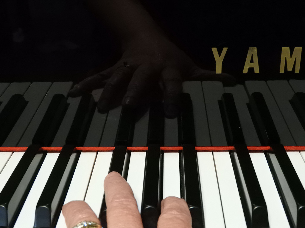 Piano 9 by homeschoolmom