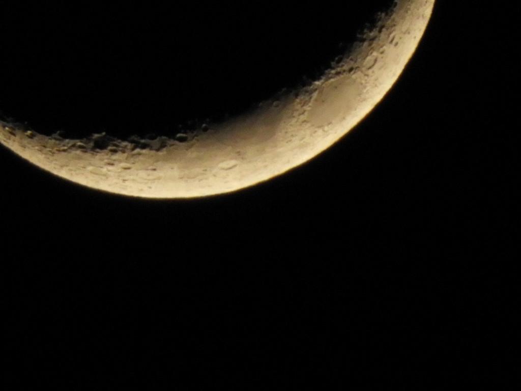Moon bottom by homeschoolmom