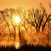 Baker Wetlands Sunrise 4-11-21 by kareenking