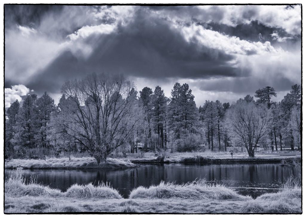My Pond by joysabin