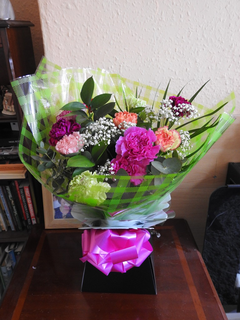 Flowers by oldjosh