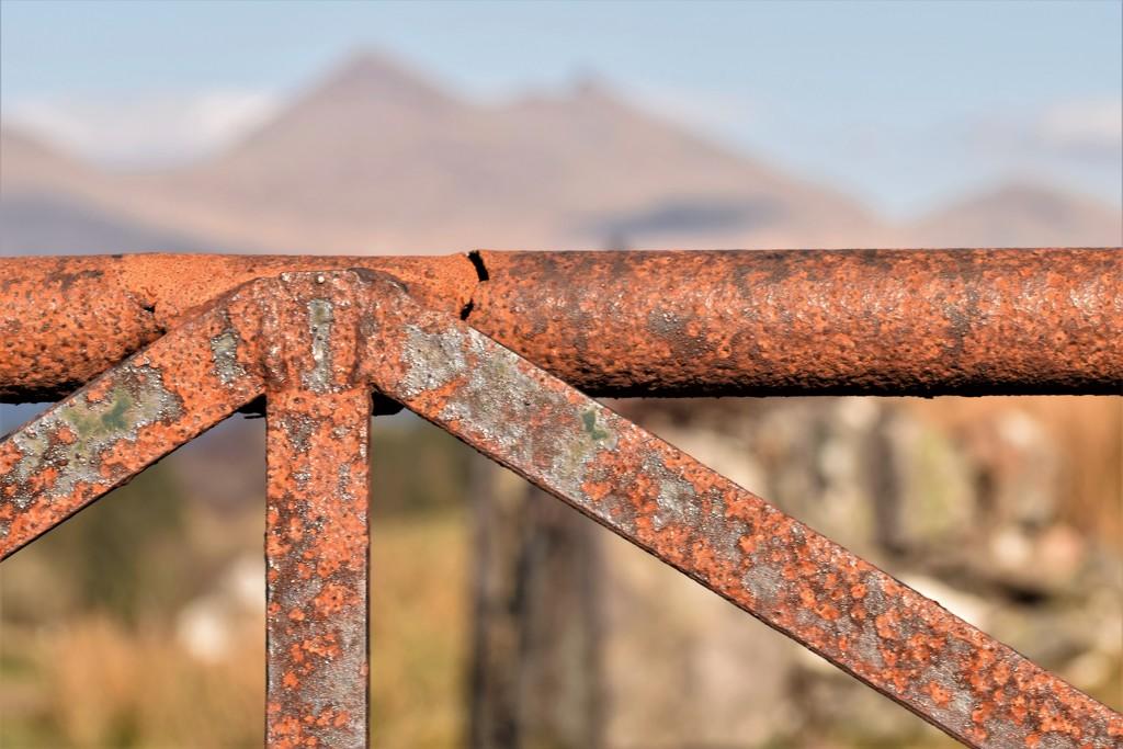 rusty gate by christophercox