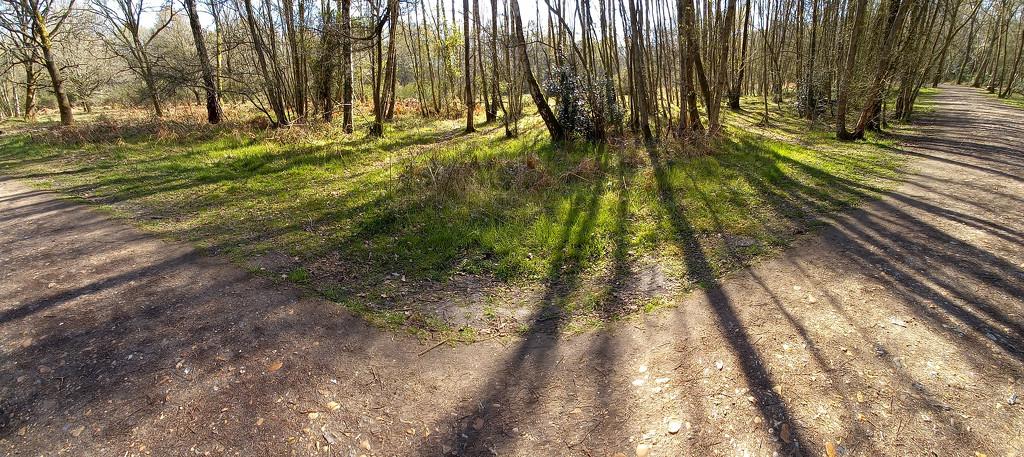 April 13th Radiating Shadows by valpetersen