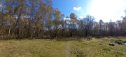 15th Apr 2021 - April 15th Southwood Picnic Area