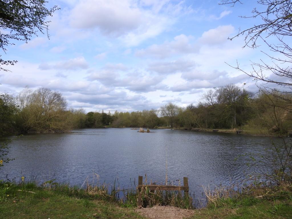 Iremongers Pond by oldjosh