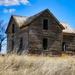 Abandoned Homestead near Oyen by rwaterhouse