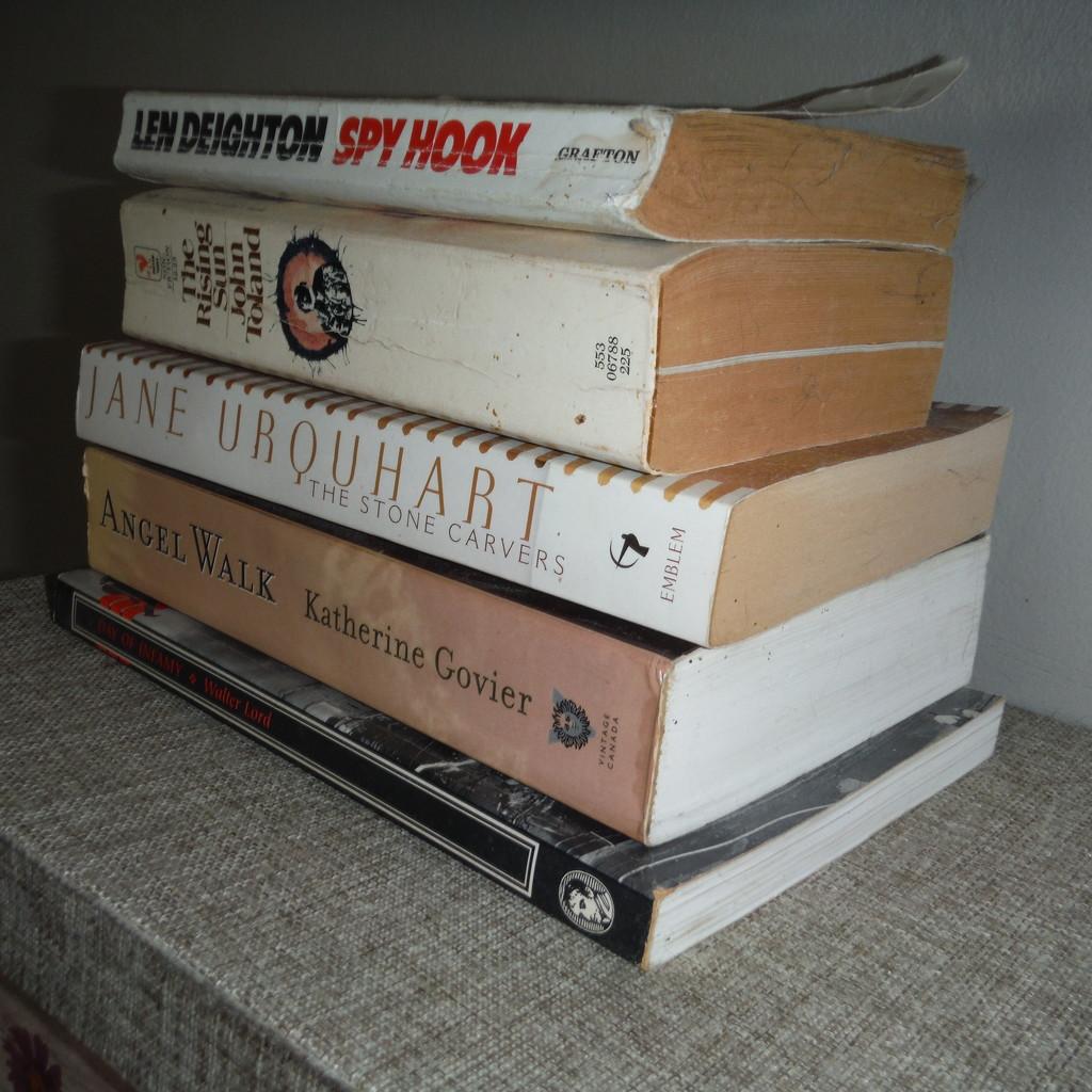 Paper #3: Paperback Books by spanishliz