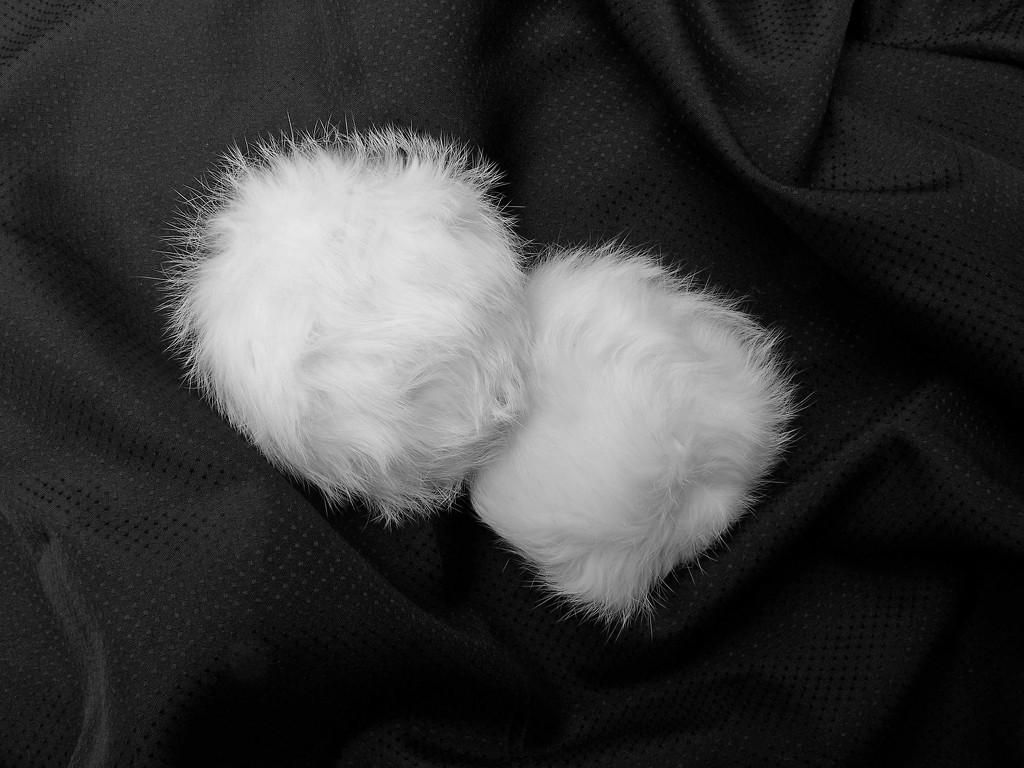 White on black 1... by marlboromaam