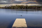 18th Apr 2021 - Island Lake Park