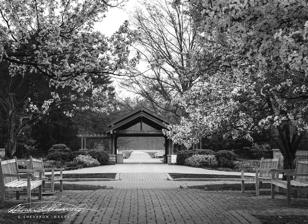 Inniswood Entrance - B&W by ggshearron