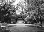 18th Apr 2021 - Inniswood Entrance - B&W