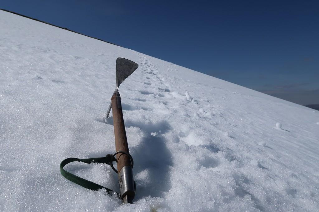 Cutting Snow Steps by jamibann