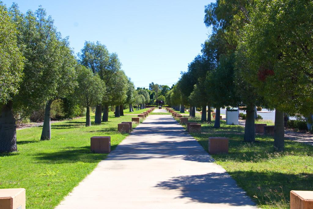 Day 2 - Amaroo Park,  Capella by terryliv