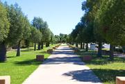 18th Apr 2021 - Day 2 - Amaroo Park,  Capella
