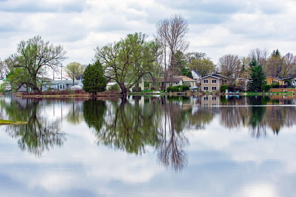 Alexandria's Mill Pond  by farmreporter