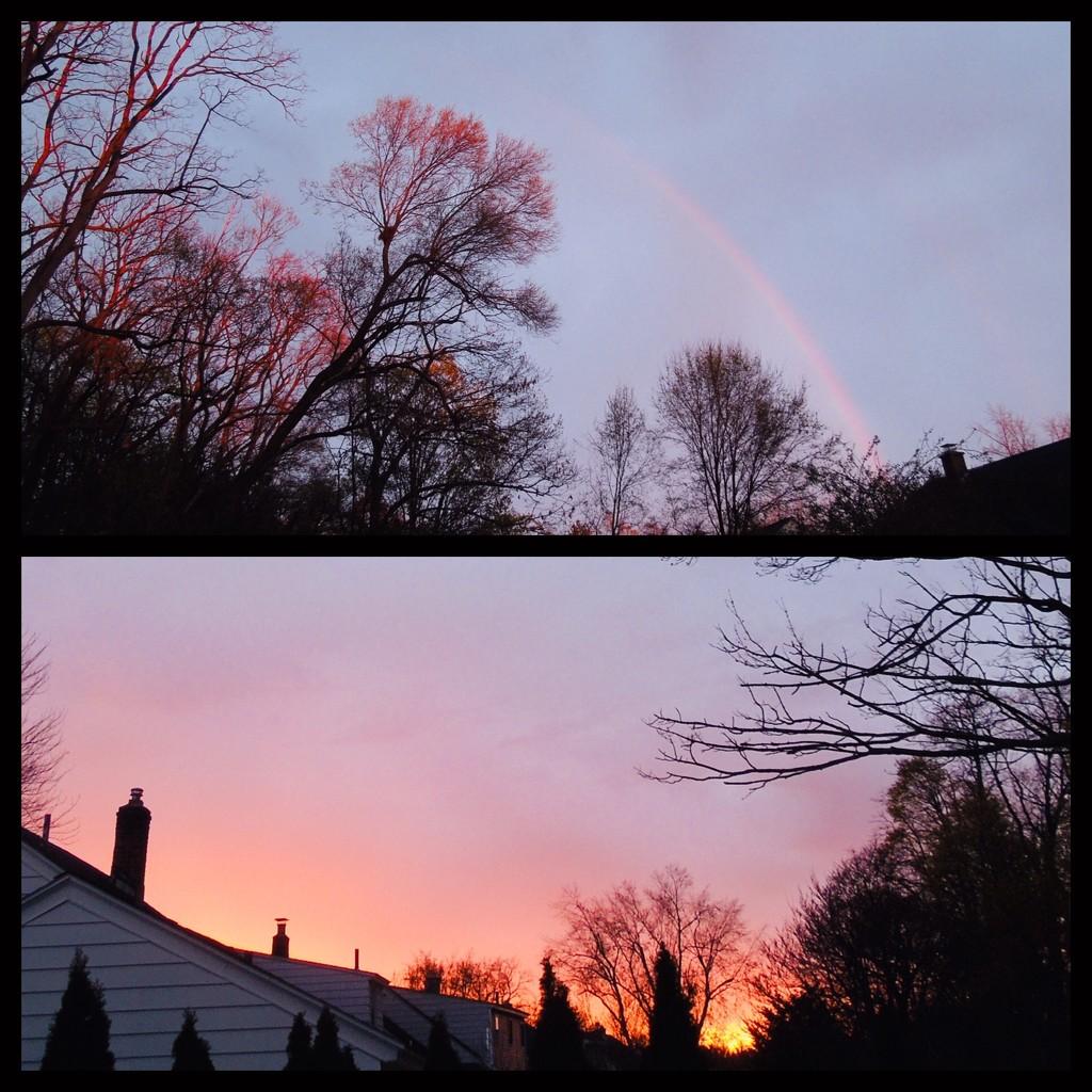 4-19-21 rainbow sherbet by bkp