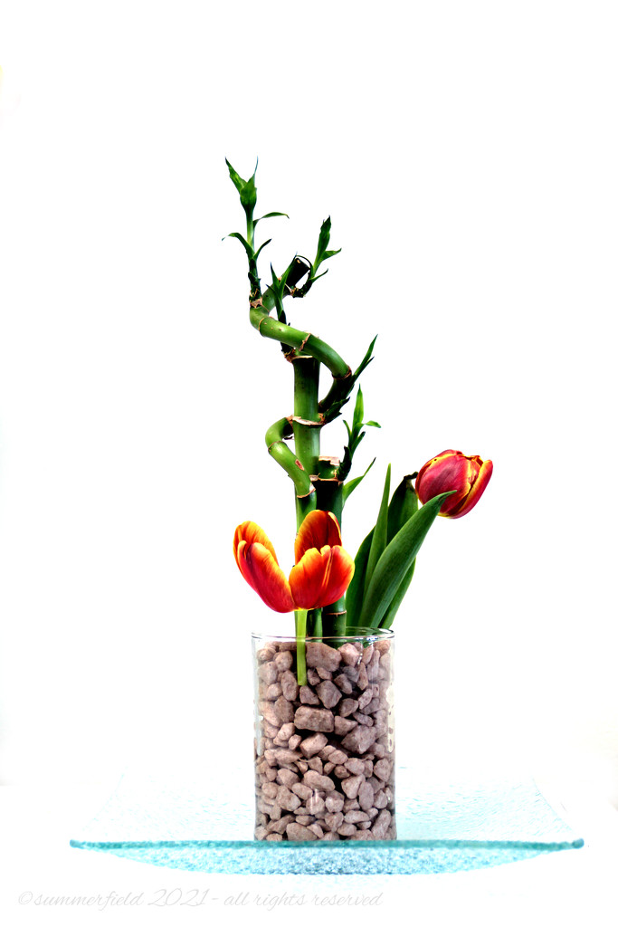 ikebana by summerfield