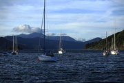 19th Apr 2021 - Farewell Picton and the South Island