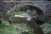 17th Apr 2021 - Historic Bridge