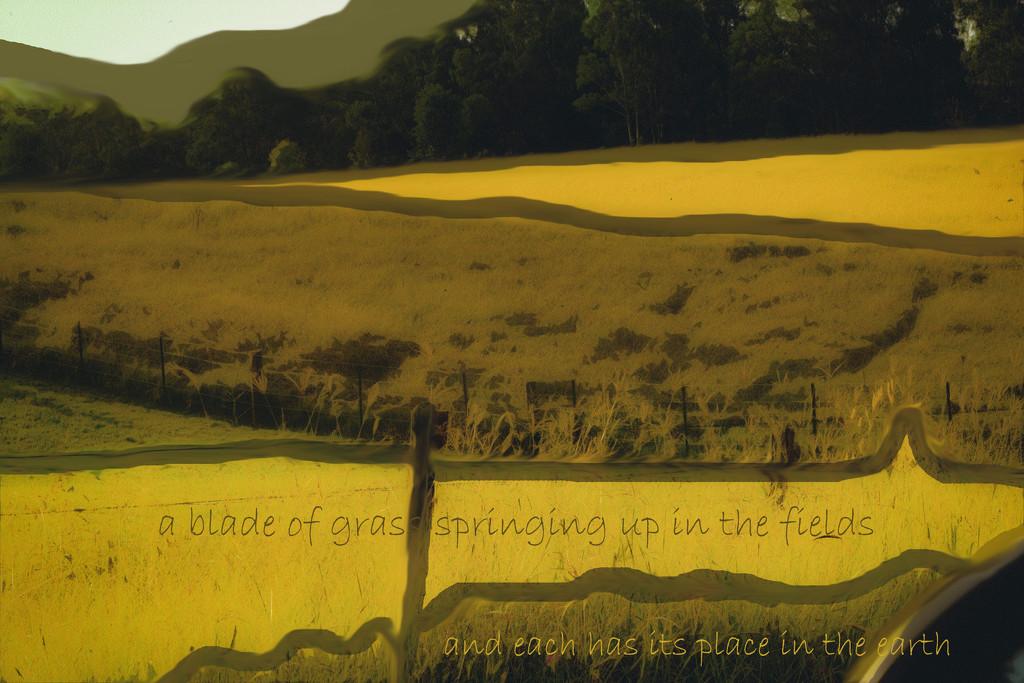 Artist Challenge Colin McCahon - Landscape by annied