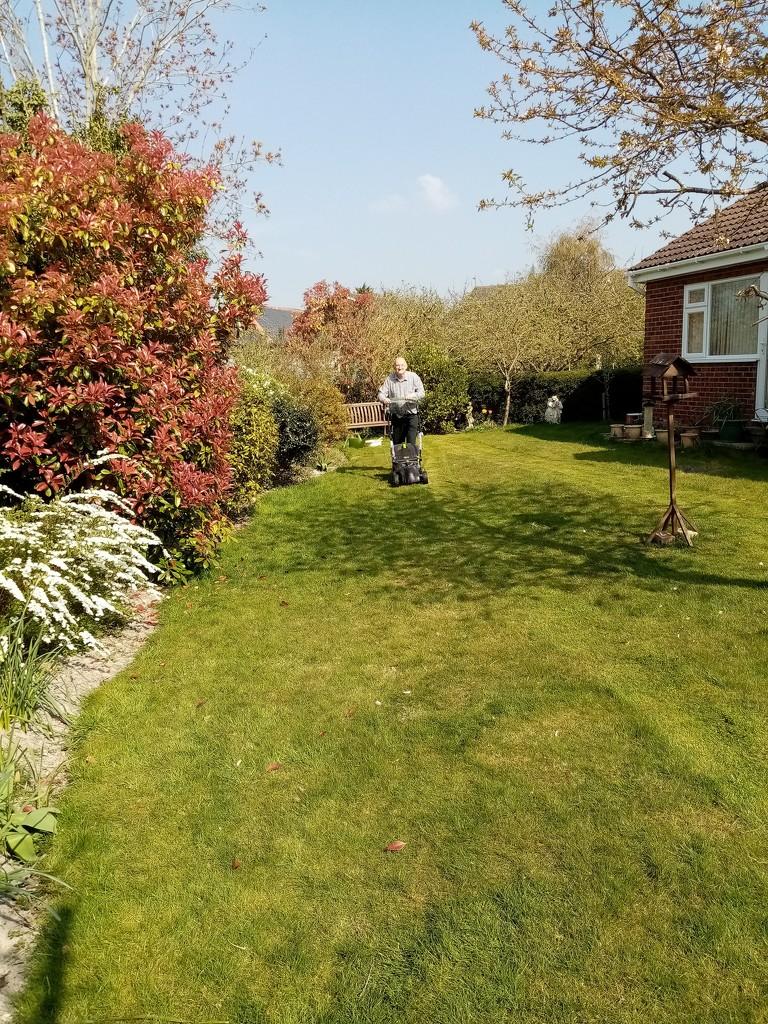 Lawn Cutting  by g3xbm