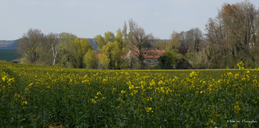 French coutryside by parisouailleurs
