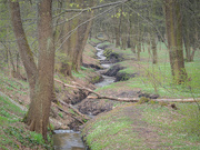 20th Apr 2021 - Old-new river