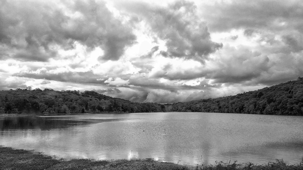 Gar Creek Bay on a Cloudy Day by milaniet