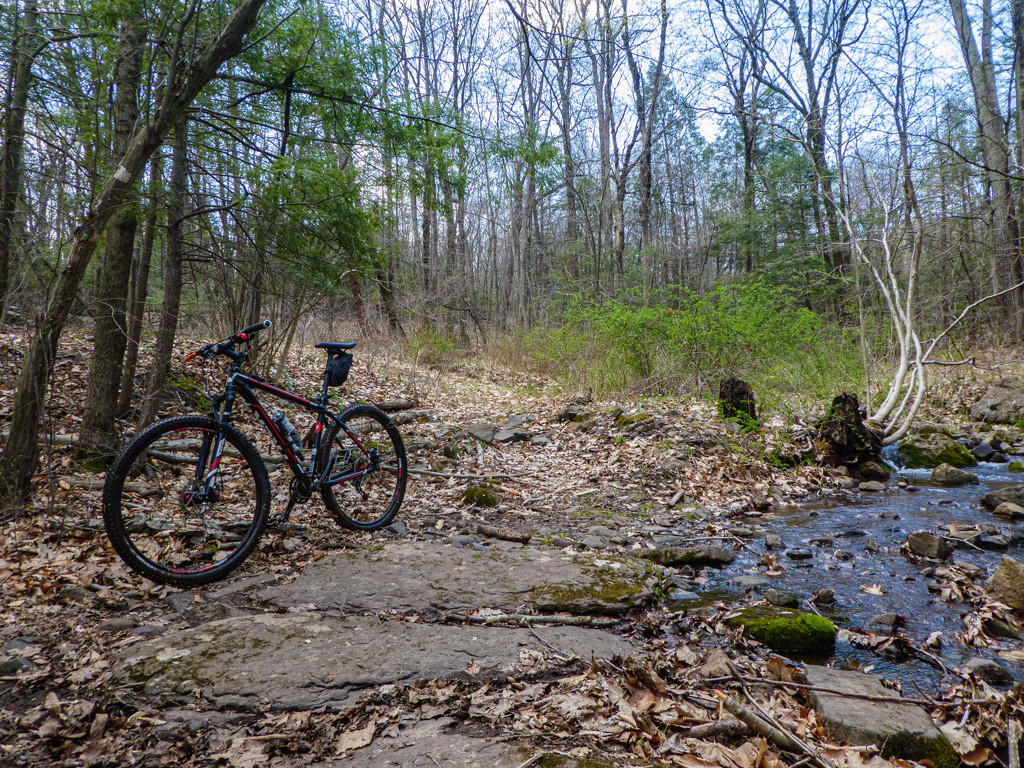 The first mountain bike ride of the year was a muddy one. by batfish