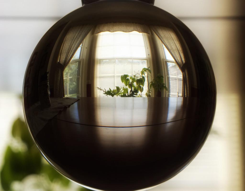 Window Light by linnypinny