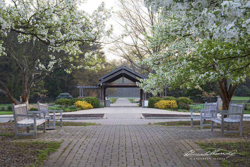 Park Entrance in Color by ggshearron