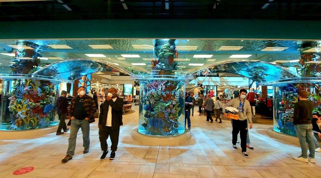 Giant  Fish Tank by harbie