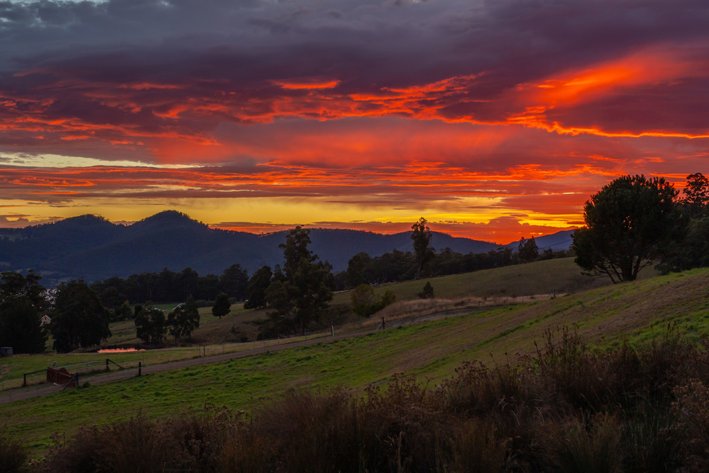 Sunrise in Autumn by gosia