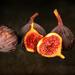 Figs by mv_wolfie