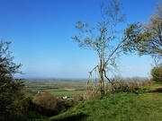 22nd Apr 2021 - View from Turn Hill