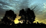 17th Apr 2021 - Sunset #1