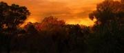 21st Apr 2021 - Sunset #3
