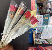 23rd Apr 2021 - Books and Roses