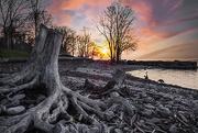 24th Apr 2021 - Paletta Lakefront Park