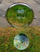 25th Apr 2021 - 25. Mirror