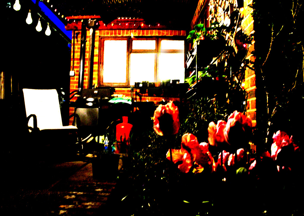 April 25th Tulips & Fairy Lights by valpetersen