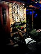 23rd Apr 2021 - April 23rd The Back Porch