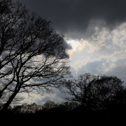 20th Apr 2021 - Dramatic Skies signifying nothing