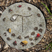 Stepping stone in the park 2