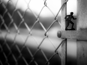 26th Apr 2021 - on the fence...